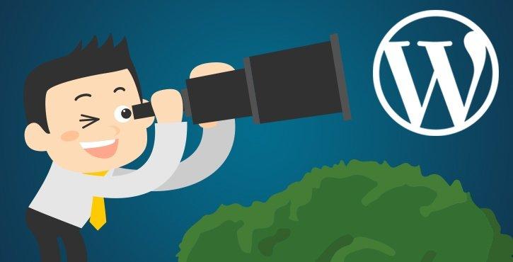 scoprire il tema e i plugin di un sito Wordpress - Collegare
